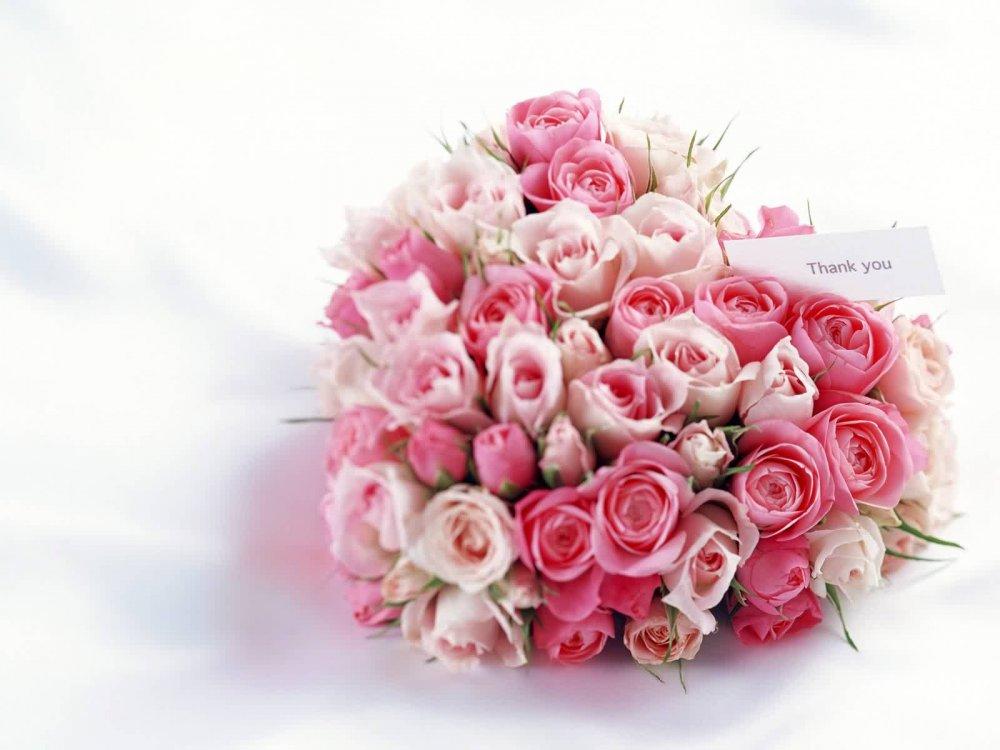 romantic-pictures-aljremh-com%2520%2819%29.jpg
