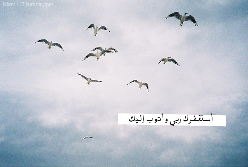 tumblr_mi0cptrTzB1r2idmao1_500.png