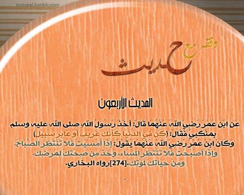 tumblr_mgni0qD3vn1qf81hco1_500.jpg