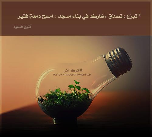 tumblr_mftd8qFz791rwybuxo1_500.png
