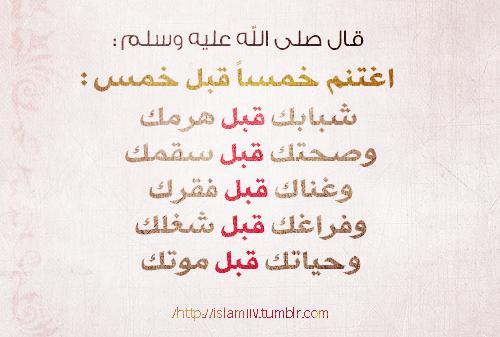 tumblr_m5ohilcB7I1r2idmao1_500.png
