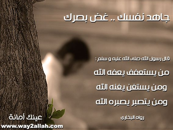 3488958691_fd8bd4df91_o.jpg