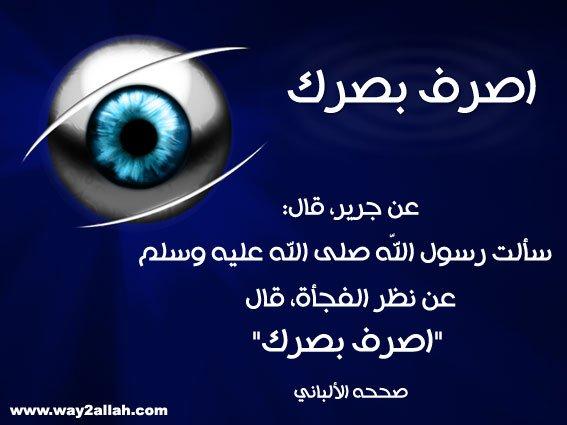 3488944235_90267e0b4c_o.jpg