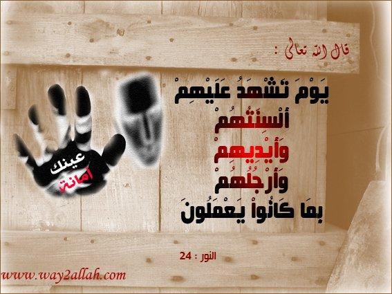 3488937847_591657d9de_o.jpg