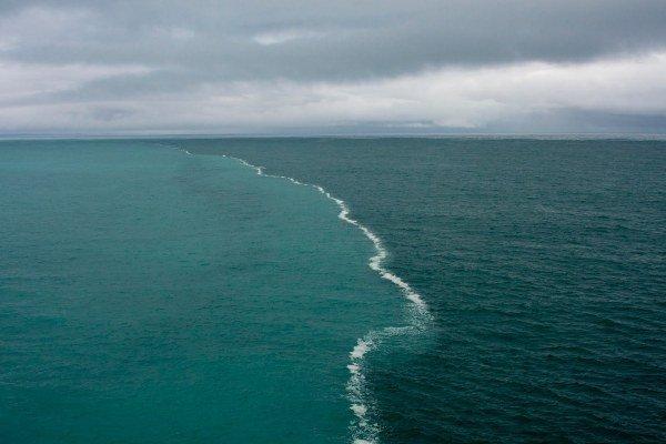 Salt-Water-Meets-Fresh-Water(1).jpg