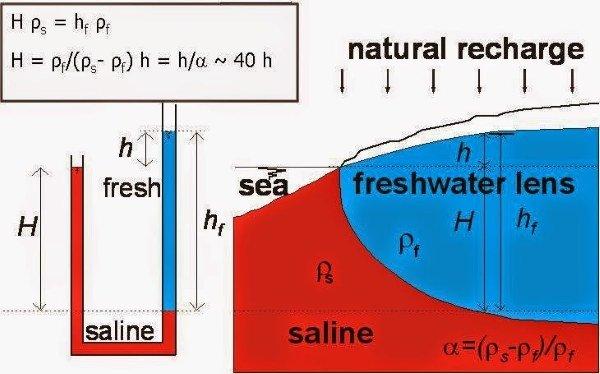Saltwater%20iny4jutrusifon.JPG