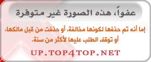 top4top_bca2573dc71.jpg