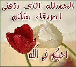 393459_1369027243.jpg