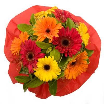 gerbera-bouquet-bright-delight-b1l.jpg
