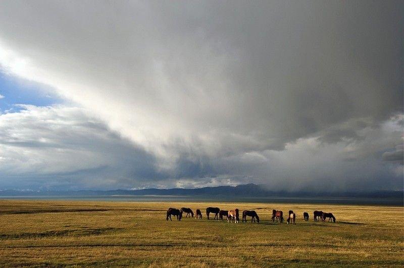 kirghizlandscapes001-17.jpg
