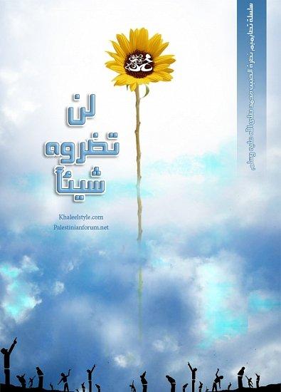 mno3at-islam4m.com38.jpg
