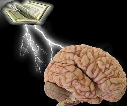 brain-quran1.JPG