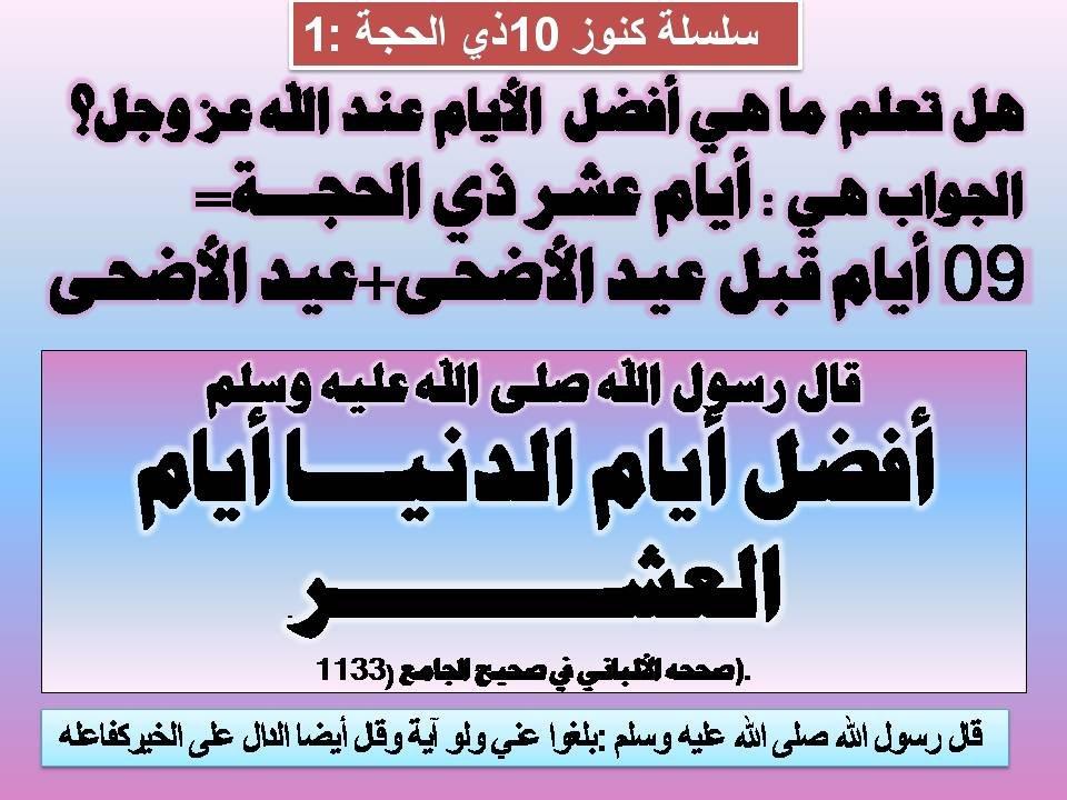 p_594jiq6l1.jpg