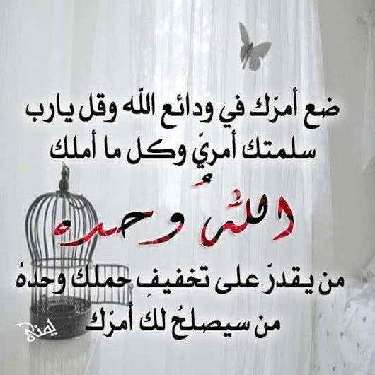 FB_IMG_1449520075098.jpg