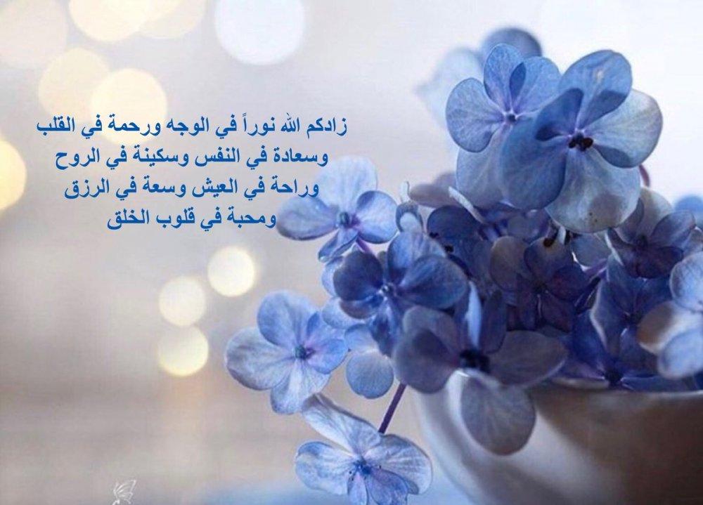 """حوته-حياة كتبي on Twitter: """"ويسعدك ويسعد مساءك وكل أوقاتك بكل خير ونور  وأطمئنان وأمان يارب… """""""