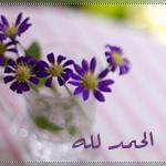 akhawat_islamway_1358872820__-.png