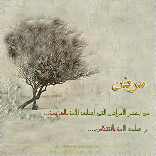 akhawat_islamway_1367168889__4.png
