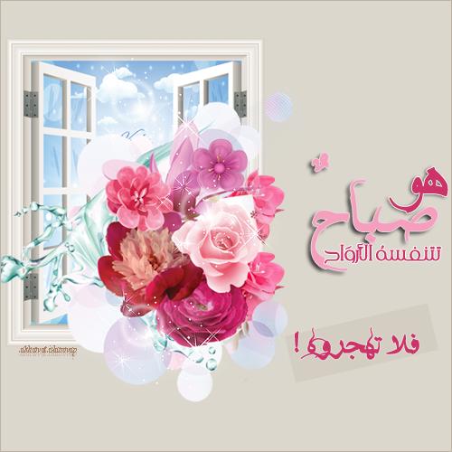 akhawat_islamway_1367697588__aaaaa.png