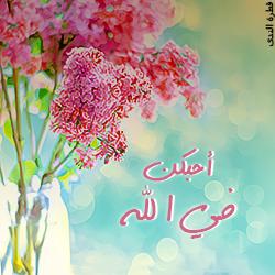akhawat_islamway_1377050619__-1.png