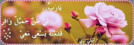 akhawat_islamway_1383405325__nouvelle_image_1.png
