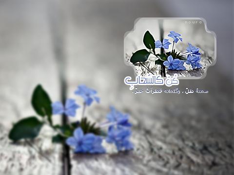 akhawat_islamway_1384020454____3.png