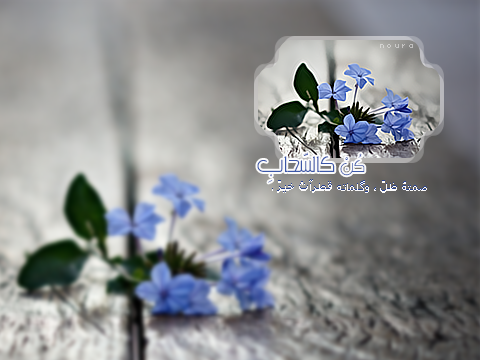 akhawat_islamway_1384084652____3.png