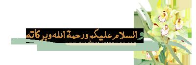 akhawat_islamway_1386355371__3.png