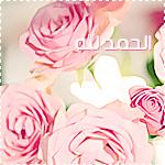 akhawat_islamway_1387582411___.png