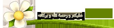akhawat_islamway_1392577048___1.png