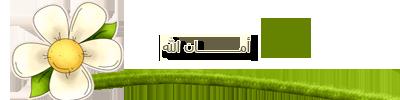 akhawat_islamway_1392577102___2.png