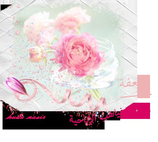 akhawat_islamway_1395168435__2.png