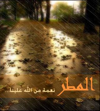 akhawat_islamway_1417208336__.jpg