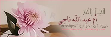 akhawat_islamway_1417650609__5.png