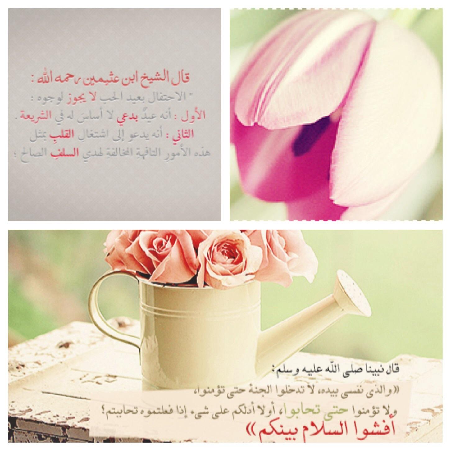 akhawat_islamway_1423848892__image.jpg