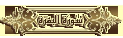 akhawat_islamway_1426552686___copy.png
