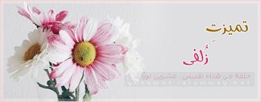 akhawat_islamway_1442008117__bpx81776.png