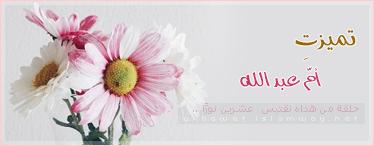 akhawat_islamway_1442008445__umq81776.png
