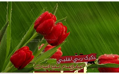 akhawat_islamway_1450028016____1.png
