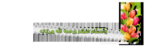akhawat_islamway_1456400504____3.png