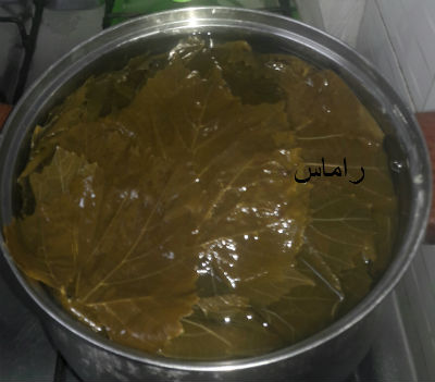 akhawat_islamway_1456784133__3.jpg