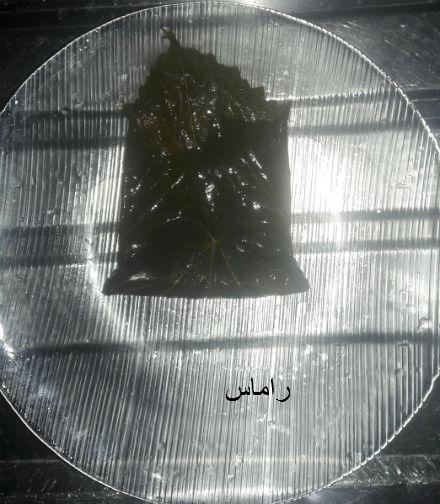 akhawat_islamway_1456789184__15.jpg
