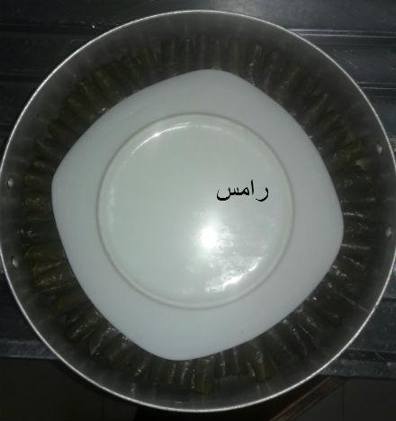 akhawat_islamway_1456789724__17.jpg