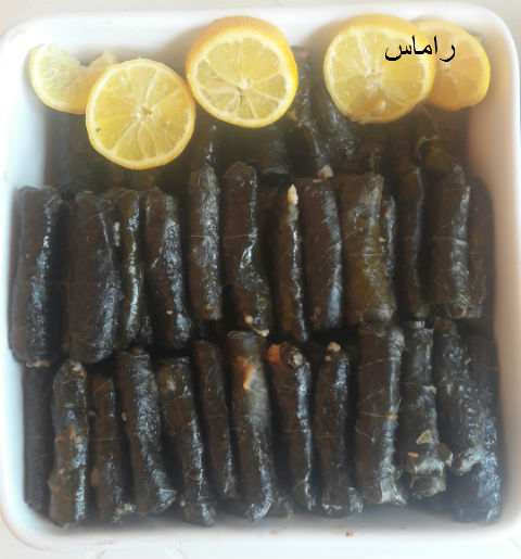 akhawat_islamway_1456790063__19.jpg