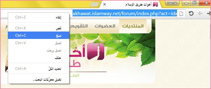 akhawat_islamway_1457540957___1.png