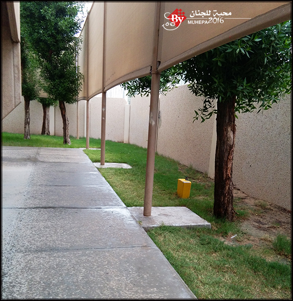 akhawat_islamway_1479990595__img_20161124_101118.jpg