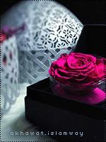 akhawat_islamway_1480244002___2.png