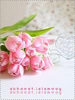 akhawat_islamway_1480244104__4.png