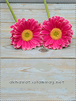 akhawat_islamway_1480244322___8.png