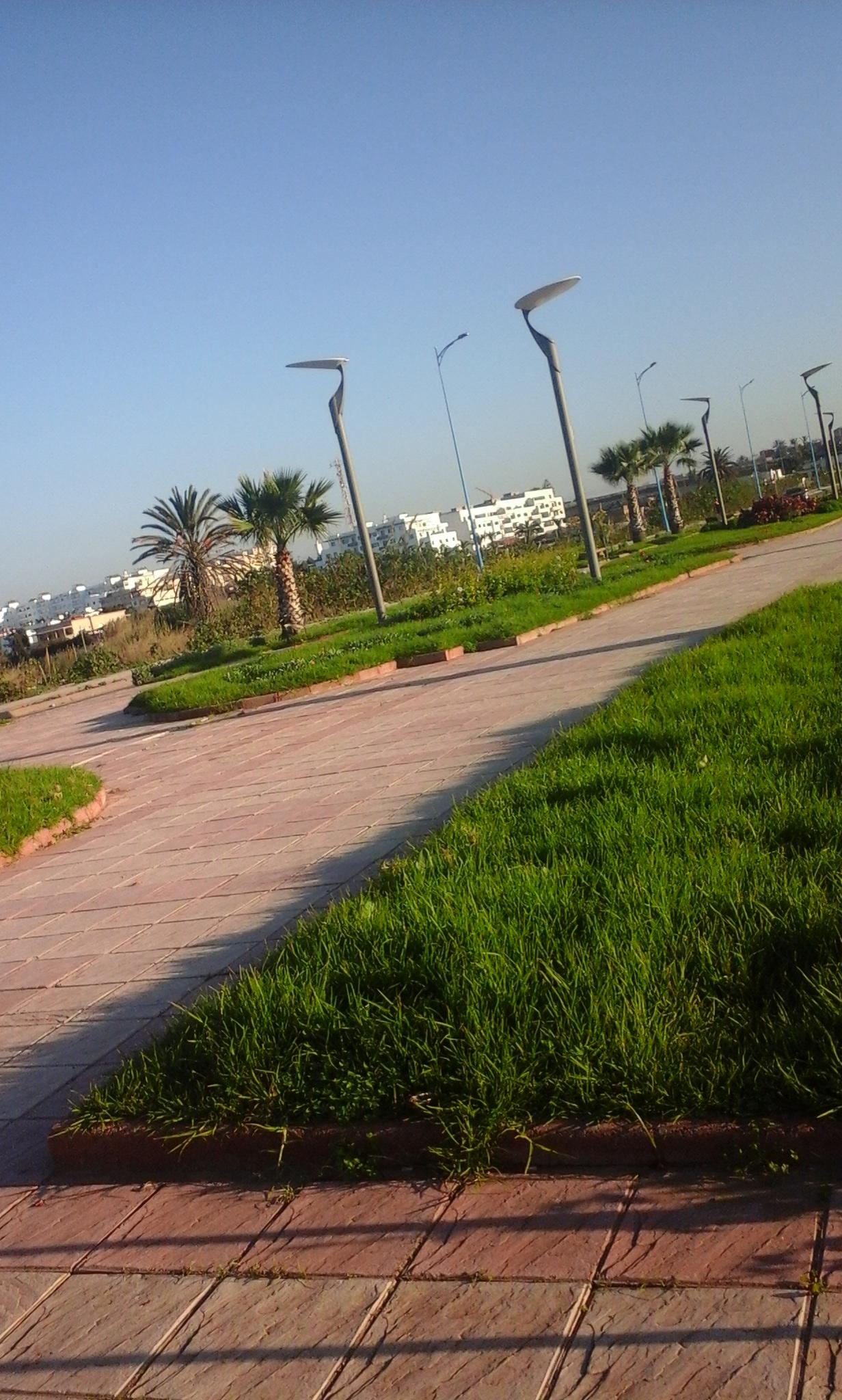 akhawat_islamway_1483036900___.jpg
