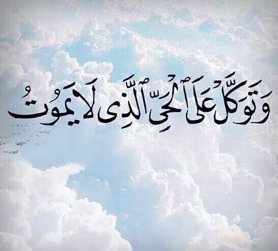 akhawat_islamway_1497136254__18580131_753872918106487_985456353164132352_n.jpg